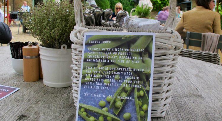 Organic Cafes